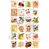 Prima Marketing - Fruit Paradise Stickers, 48 osaa
