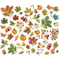 Simple Stories - Autumn Splendor Foliage Bits & Pieces Die-Cuts, 49 osaa