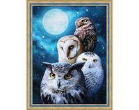ArtMosfa - Night Owls (K), Timanttimaalaus, 30x40cm