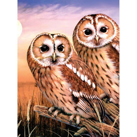 Royal&Langnickel - Paint By Numbers Kit, Tawny Owls
