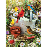 Royal&Langnickel - Paint By Numbers Kit, Garden Birds