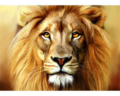 Collection D'Art - Lion (K)(N), Timanttimaalaus, 38x27cm
