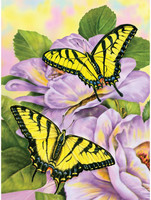 Royal&Langnickel - Paint By Numbers Kit, Swallowtail Butterflies
