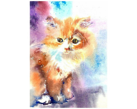 Collection D'Art - Kitten (K)(N), Timanttimaalaus, 27x38cm