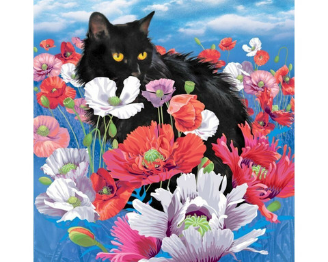 Collection D'Art - Cat Among Poppies (K)(N), Timanttimaalaus, 38x38cm