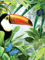 Royal&Langnickel - Paint By Numbers Kit, Jungle Toucan