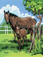 Royal&Langnickel - Paint By Numbers Kit, Mare & Foal