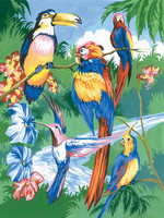Royal&Langnickel - Paint By Numbers Kit, Tropical Birds