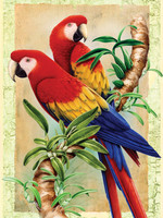 Royal&Langnickel - Paint By Numbers Kit, Bamboo Parrots