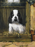 Royal&Langnickel - Paint By Numbers Kit, Spaniel Puppy