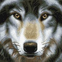 Craft Buddy - Wolf (K)(P), Timanttimaalaus, 30x30cm