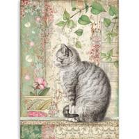 Stamperia - Rice Paper, A4, Cat