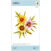 Spellbinders - Dies By Susan Tierney-Cockburn, Stanssisetti, Coreopsis
