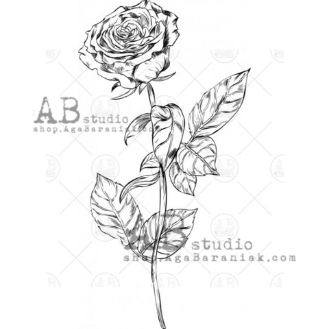 ABstudio by Aga Baraniak - Rubber Stamp, Leima, Rose