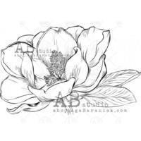 ABstudio by Aga Baraniak - Rubber Stamp, Leima, Magnolia