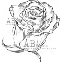 ABstudio by Aga Baraniak - Rubber Stamp, Leima, Small Roses