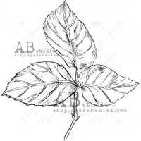 ABstudio by Aga Baraniak - Rubber Stamp, Leima, Small Leaf