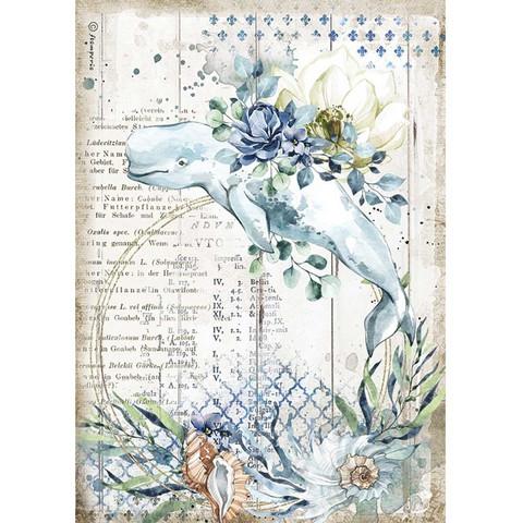 Stamperia - Romantic Sea Dream, Rice Paper, A4, Whale
