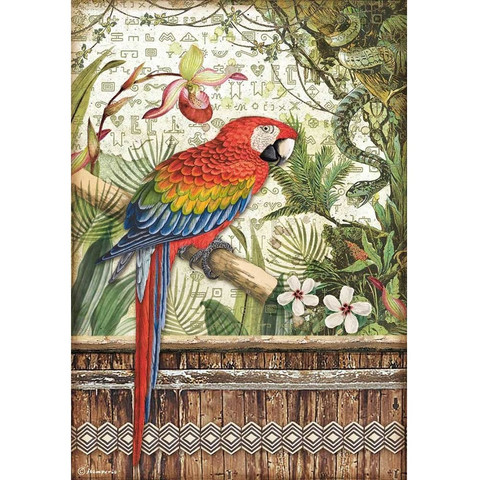 Stamperia - Amazonia, Rice Paper, A4, Parrot