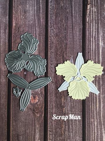 The Scrapman - Cattleya Orchid, Stanssisetti