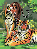 Royal&Langnickel - Paint By Numbers Kit, Tigers