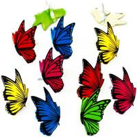 Haaraniitti, perhoset, 12kpl