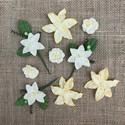 Kukat, lehdet ja heteet