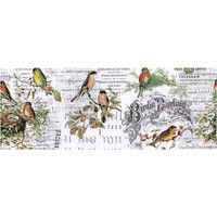 Tim Holtz - Idea-Ology Collage Paper, Aviary, 15cm x 5,5m