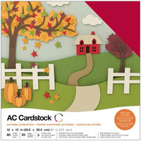 American Crafts - Variety Cardstock Pack 12