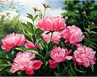 Collection D'Art - Peony Colour (K), Timanttimaalaus, 48x38cm