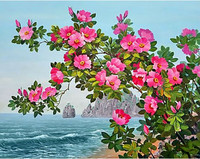 Collection D'Art - Blossoming dog rose (K)(N), Timanttimaalaus, 38x48cm