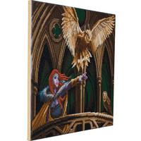 Craft Buddy - Owl Messenger (O)(P), Timanttimaalaus, 50x40cm