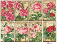 Decorer - Roses, Meadow, Korttikuvia, 24 osaa