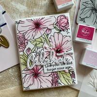 Pinkfresh Studio - Floral Focus, Kerrossapluunasetti