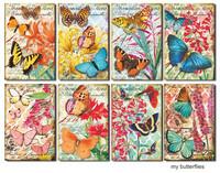 Decorer - My Butterflies, Korttikuvia, 24 osaa