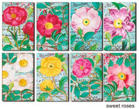 Decorer - Sweet Roses, Korttikuvia, 24 osaa
