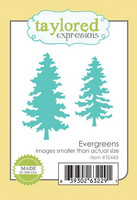 Stanssi, Evergreens
