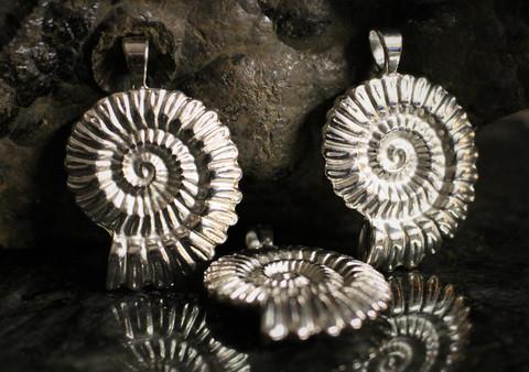 Riipus ammoniitti, metallia