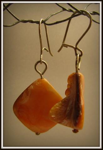 Korvakorut, oranssi simpukka