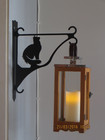 Flower/lantern rack cat sitting long-haired