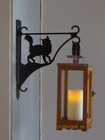 Flower/lantern rack cat is coquettish