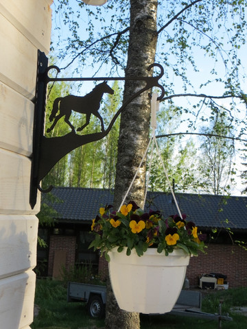 Amppeliteline Hevonen