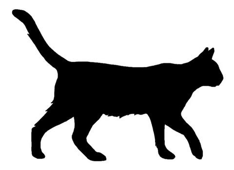 Kello kissa kävelee LK