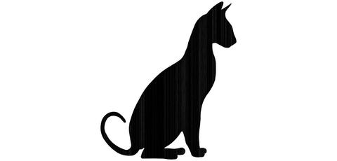 Tuikkuteline kissa istuu LK