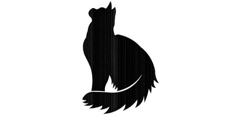 Tuikkuteline kissa istuu PK