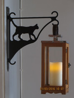 Flower/lantern rack cat walks short-haired