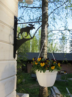Flower/lantern rack  Moose
