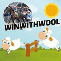 Winwithwool lampaanvillapatja