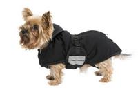 W-Healing koiran takki 25-35 cm