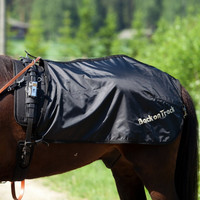 Back On Track ajoloimi ruotsalainen malli